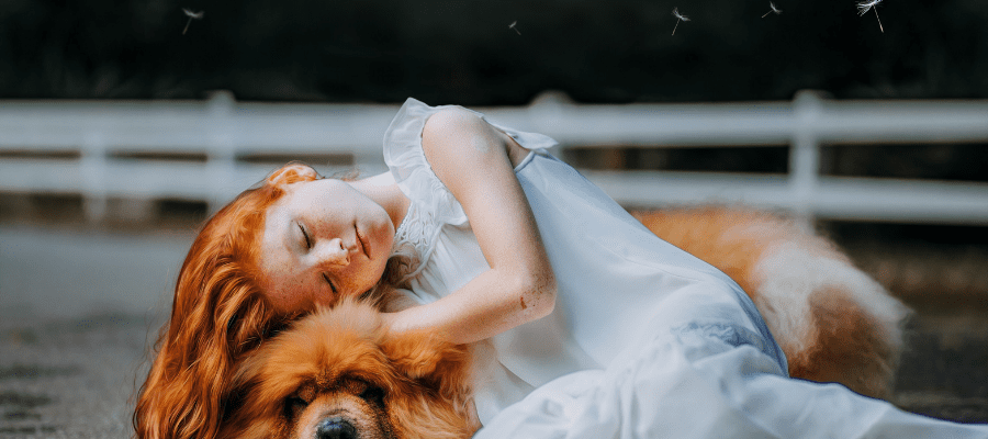 Dornröschen: легенда о Спящей Красавице